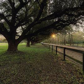 Aiken South Carolina  St1 by Steve Rich
