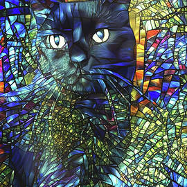 Aint Superstitious by Peggy Collins