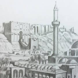 Al-Khusrawiyya Complex - Aleppo  by Mohammad Hayssam Kattaa