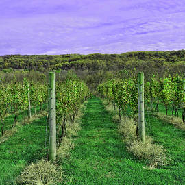 Alba Winery 3 - Milford, N J by Allen Beatty