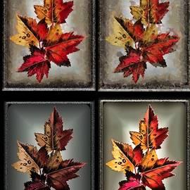 Album of Maple Leaves by Mario Carini
