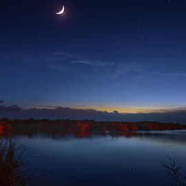 Alligators and Comets by Mark Andrew Thomas