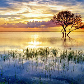 Alone at Sunset by Debra and Dave Vanderlaan