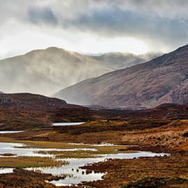 Alone in a Bleak Landscape by Robert Murray