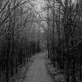 Alone by John Sansone