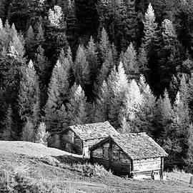 Alpine village scene by Alexey Stiop