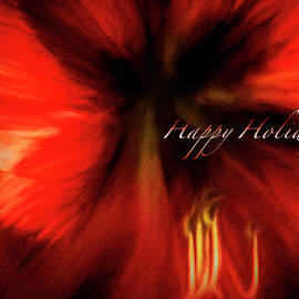 Amaryllis Holiday Greeting by Francis Sullivan