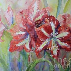 Amaryllis by Marsha Reeves