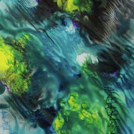 Ameba by Rob McCullough