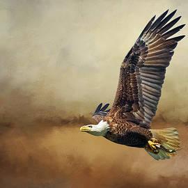 Bald Eagle Flying In Storm Clouds by Diana Van Tankeren