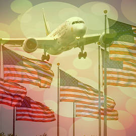 American flag and jet plane  by Geraldine Scull