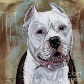 American Staffershire Terrier  by Cat Culpepper