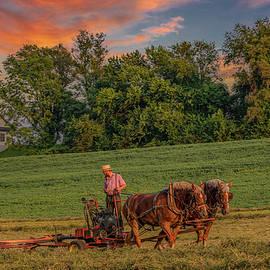 Amish Farmer at Sundown by Marcy Wielfaert