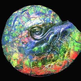 Ammonite Eye by Douglas Taylor