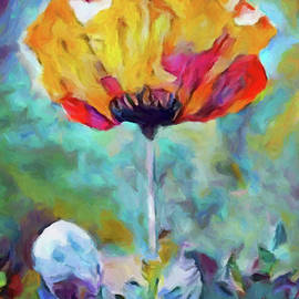 Among the Poppies by Susan Maxwell Schmidt