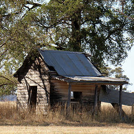 An old Australian Cream Shed by Alison A Murphy