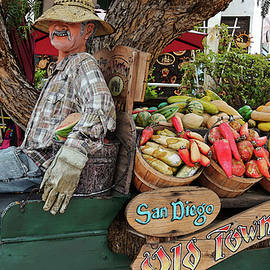 An Old Town San Diego Entrance Display, CA, USA by Derrick Neill