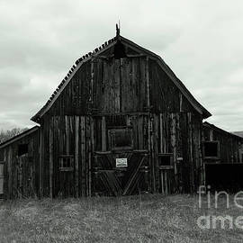 An old wooden Montana Barn by Jeff Swan