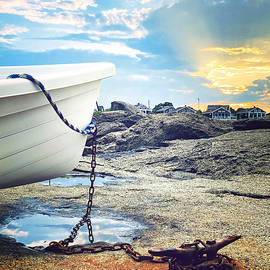 Anchored Boat by Lisa Cuipa