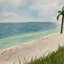 Anclote Key, Florida by Sarah Bassett