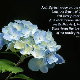 And Spring Arose on the Garden Fair by Marilyn DeBlock