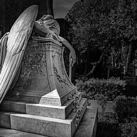 Angel of Grief by Mike Schaffner