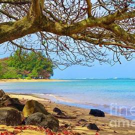 Anini in Winter by Kris Hiemstra