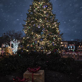 Annapolis Christmas 2020 by Robert Fawcett