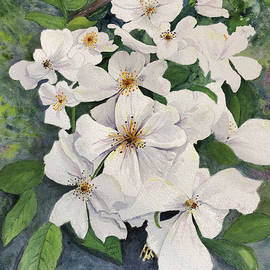 Apple Blossoms by Bonnie Young