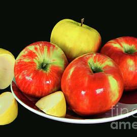 Apple Still Life on Black by Regina Geoghan