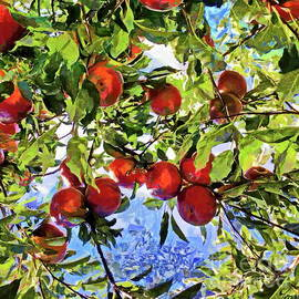 Apple Tree With Fruits by Yorgos Daskalakis