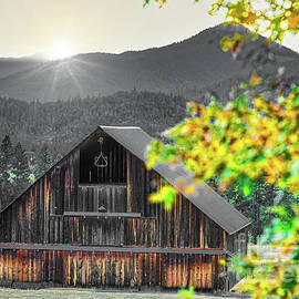 Applegate Valley Barn 2 by Michele Hancock