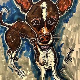 Applehead Chihuahua  by Geraldine Myszenski