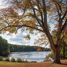 Arcadia in the Fall by Kirkodd Photography Of New England
