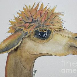 Archie the Alpaca by Shirley Dutchkowski