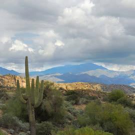 Arizona Memories  by Gordon Beck