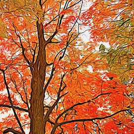 Array of Fall Colours by Maria Keady