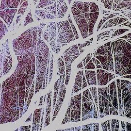Art Branch of Dark Purple by Jeremy Lyman