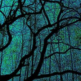 Art Branches of Greeish Blue by Jeremy Lyman