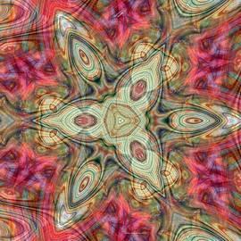 ArtBarb 042521 by Darius Xmitixmith
