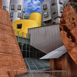 Artful Architecture by Mike Martin
