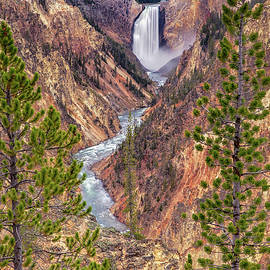 Artist Point - Yellowstone National Park #3 by Stephen Stookey