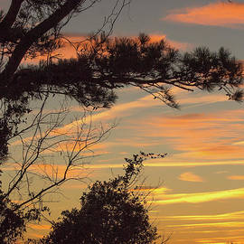 At Day's End by Michelle Tinger