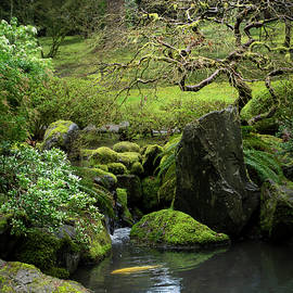 At Portland Japanese Garden by Dimitry Papkov