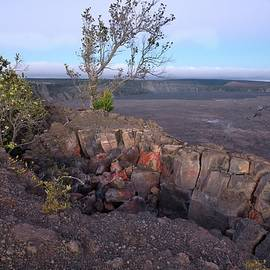 At the Edge of Halema'uma'u Crater by Heidi Fickinger
