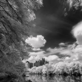 Atlanta Midtown from Piedmont Park infrared by Murray Rudd