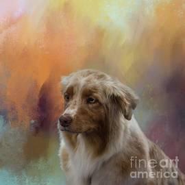 Aussie by Eva Lechner