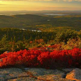 Autumn Acadia Sunset by Stephen Vecchiotti