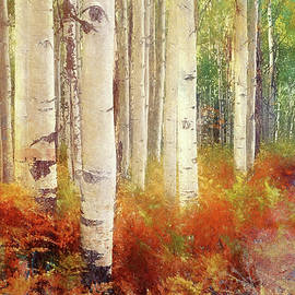 Autumn among the Birches by Terry Davis
