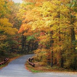 Autumn Arrives in High Point State Park by Marilyn DeBlock